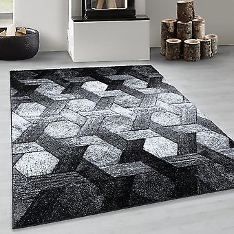 Patrón hexagonal de diseño de trenza moderna de la alfombra de diseñador en blanco negro
