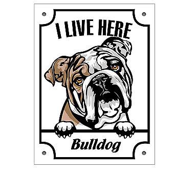 Cín doska Bulldog Kikande pes podpísať anglicky