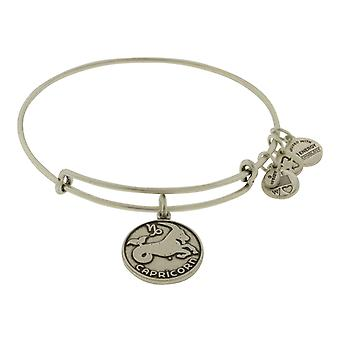 Alex and Ani Capricorn Charm Bangle Bracelet - A13EB01CARS