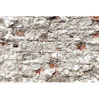 Tapete Wandbild Modern Style Stein ziegel Wand (23798897)