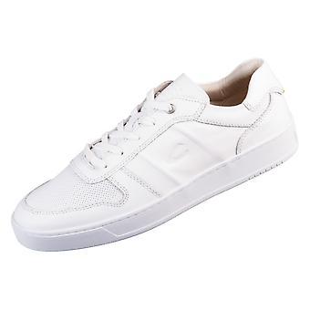 Camel Cloud 22231800C29 universal  men shoes