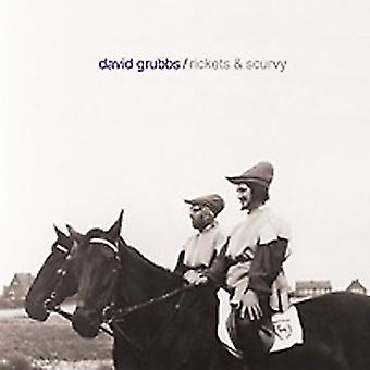 David Grubbs - Rickets & Scurvy [CD] USA import
