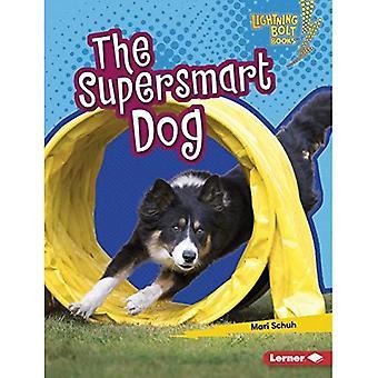 The Supersmart Dog (Lightning Bolt Books (TM) -- Supersmart Animals)