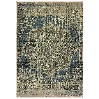 Raleigh 6649h blue/ ivory indoor area rug rectangle 7'10