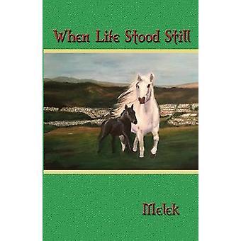 When Life Stood Still by Melek