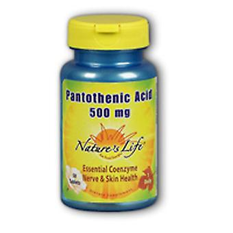 Nature's Life Pantothenic Acid, 500 mg, 250 tabs