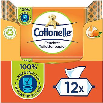 Cottonelle Mein Spa Experience Moist Toilet Paper Orange 12 x 42 Wipes 2.16 kg