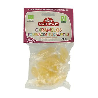 Echinacea and Eucalyptus Candies 75 g