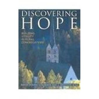 Discovering Hope Building Vita by David Poling Goldenne - David Polin