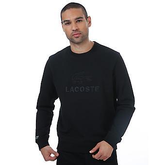 Men's Lacoste Embroidered Logo Sweatshirt in Black