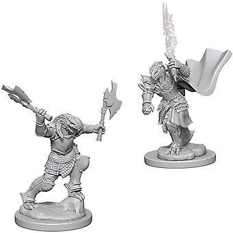 D&D Nolzurs underbara omålade miniatyrer (W4) Dragonborn Female Fighter