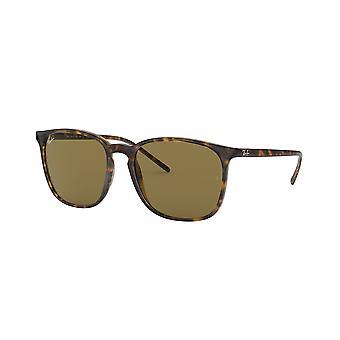 Ray-Ban RB4387 710/73 Havana/Dark Brown Sunglasses