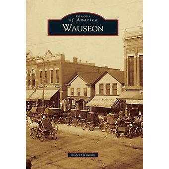 Wauseon by Robert Krumm - 9781467112574 Book