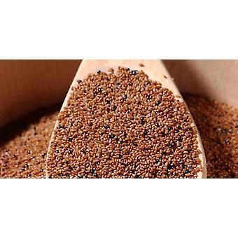 Grain de Teff -( 11lb )