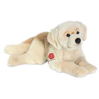 هيرمان تيدي الذهبي المسترد الكلب 60 سم