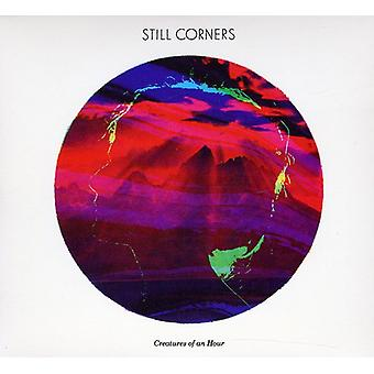 Still Corners - Creatures of an Hour [CD] USA import