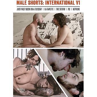 Male Shorts: International V1 [DVD] USA import