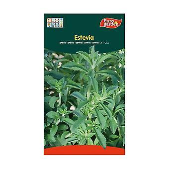 Stevia seeds 30 units