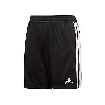 Adidas JR Tiro 19 D95946 training all year boy trousers
