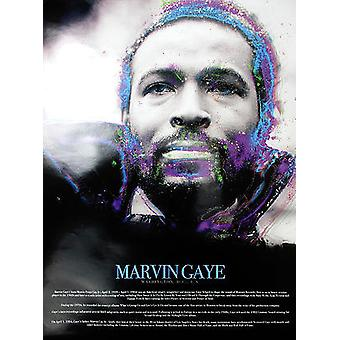 Marvin Gaye Poster With Biography (18x24)