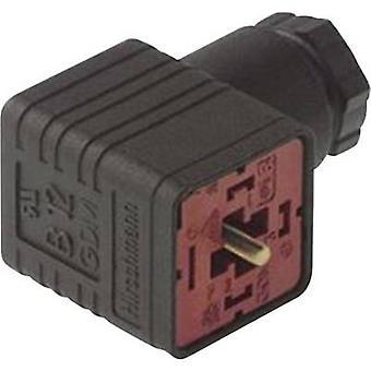Hirschmann 932 109-100 GDM 3011 J ângulo reto conector preto número de pinos: 3 + PE