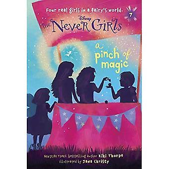 Aldrig flickor #7: En nypa magi (Disney: den aldrig tjejer) (Stepping Stone Book(tm))