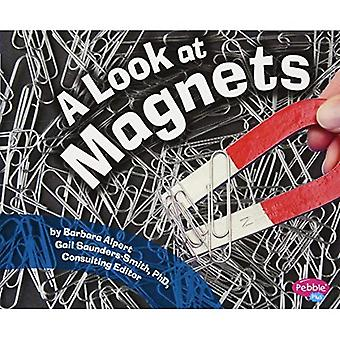 Guardate la pagina di magneti