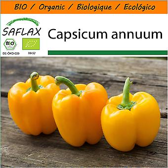 Saflax - Garden i posen - 20 frø - organisk - Sweet Pepper - Golden California Wonder - BIO - Poivron - California wonder - Jaune - BIO - Peperone - Golden California Wonder - Ecológico - paprika - Maravilla dorada de California - Paprika - Golden California Wonder