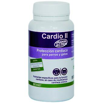 Stanvet G.A.CARDIO II CARNITINE 60COMP (Dogs , Cats , Supplements , Supplements)