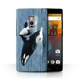 STUFF4 Case/Cover for OnePlus 2/Two/Orca/Killer Whale/Marine Wildlife