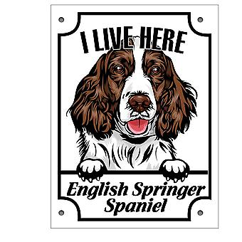 Placa de lata Inglês Springer Spaniel Kikande sinal de cachorro