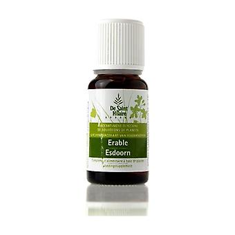 Organic Maple Macerat 30 ml