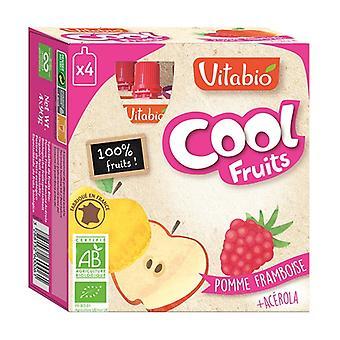 Gourde Cool Fruits Pomme Framboise BIO 4 unités de 90g