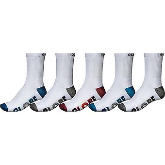 Globe multi stripe crew sock pk 5