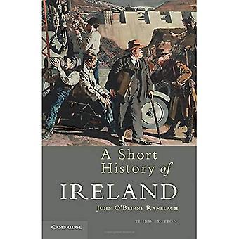Eine kurze Geschichte von Irland