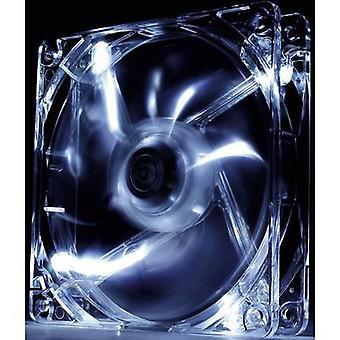 Thermaltake Pure 12 LED weiß PC-Lüfter Clear (W x H x T) 120 x 120 x 25 mm