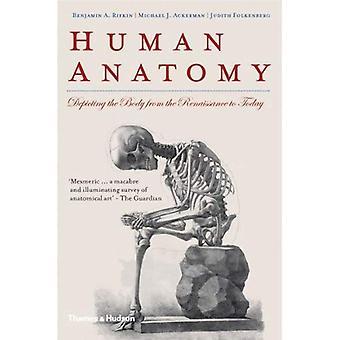 Anatomia humana: Representando o corpo desde o Renascimento até hoje