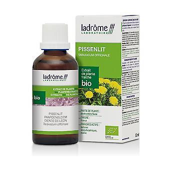 Bio Dandelion Extract 50 ml