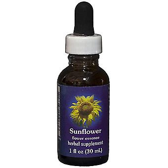 Flower Essence Tjänster Solros Dropper, 1 oz