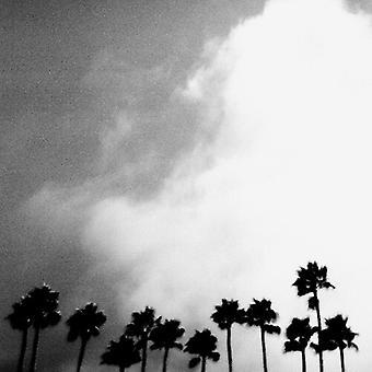 Richard Rose - Radiation Breeze [Vinyl] USA import