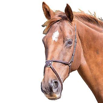 Blenheim Mexican Leather Horse Noseband