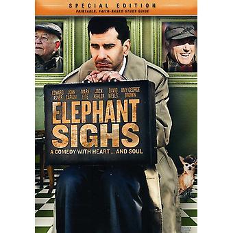 Elefant seufzt [DVD] USA import