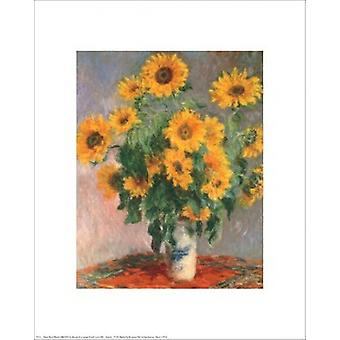 Sonnenblumen-Plakat-Druck von Claude Monet (16 x 20)