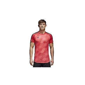 Adidas Tango Graphic CV9844 training all year men t-shirt