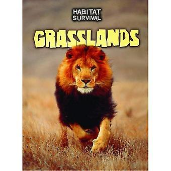 Grasslands (Habitat Survival)