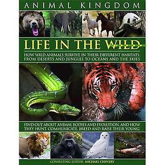 Animal Kingdom - Life in the Wild - How Wild Animals Survive in Their