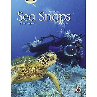 Sea Snaps (Green A) NF