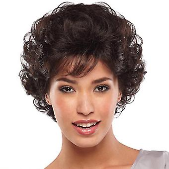 Wig Fashion Women's Short Curly Hair Synthetic Wigs Wholesale