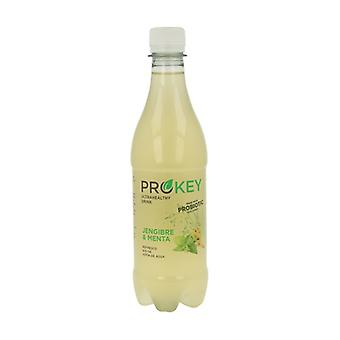Water Kefir (Ginger and Mint) 500 ml