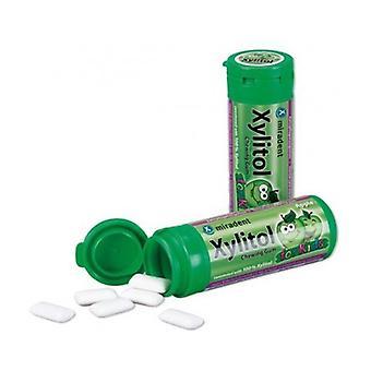 Xylitol kids gum Apple flavor 30 units (Apple)
